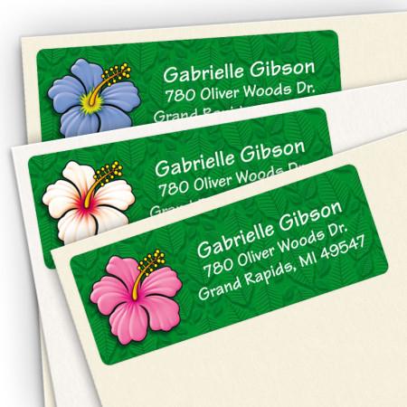 Hibiscus Assortment Pack
